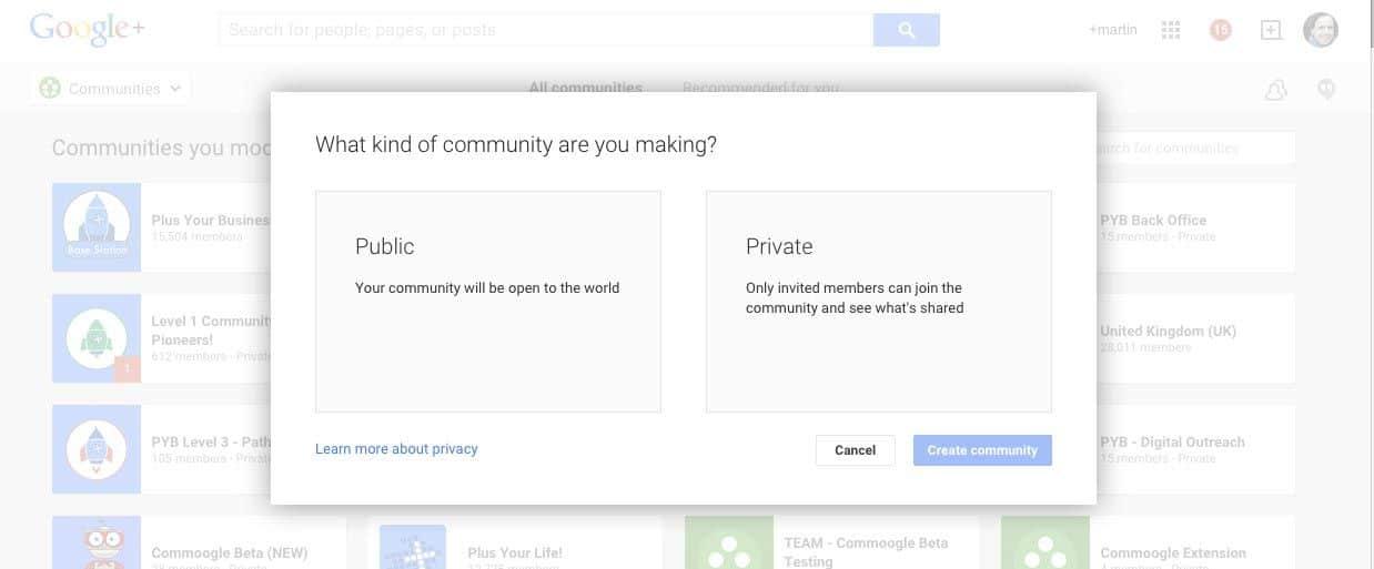 public or private google plus
