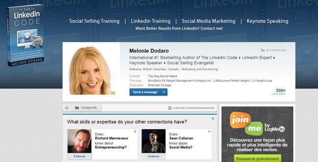 Melonie Dodaro LinkedIn