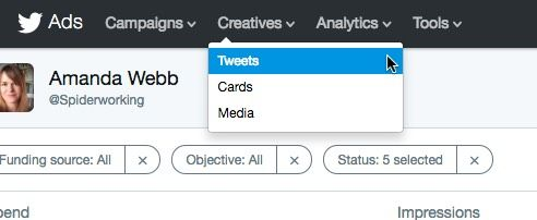 You have to go to the Twitter ads interface to review dark tweets