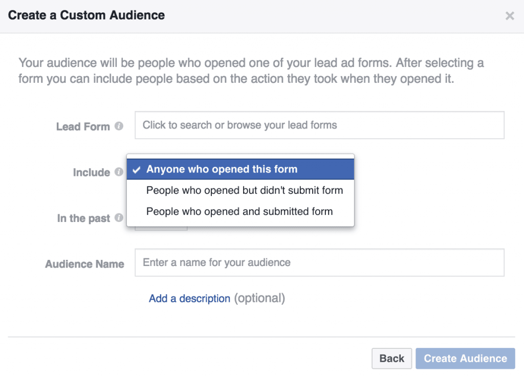 Engagement on Facebook Custom Audiences Lead Ad Engagement