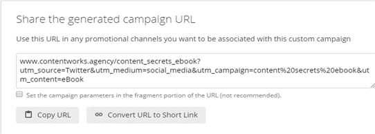 example of campaign url