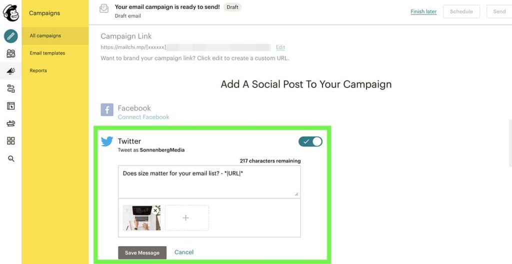 how to share an email campaign on social media