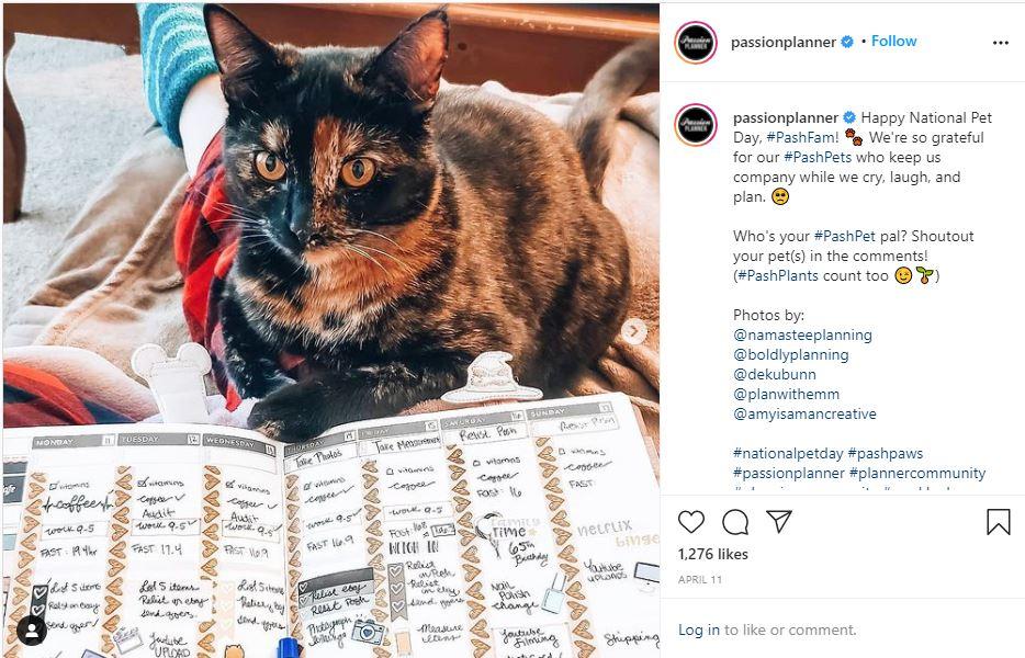 example of user-generated instagram content