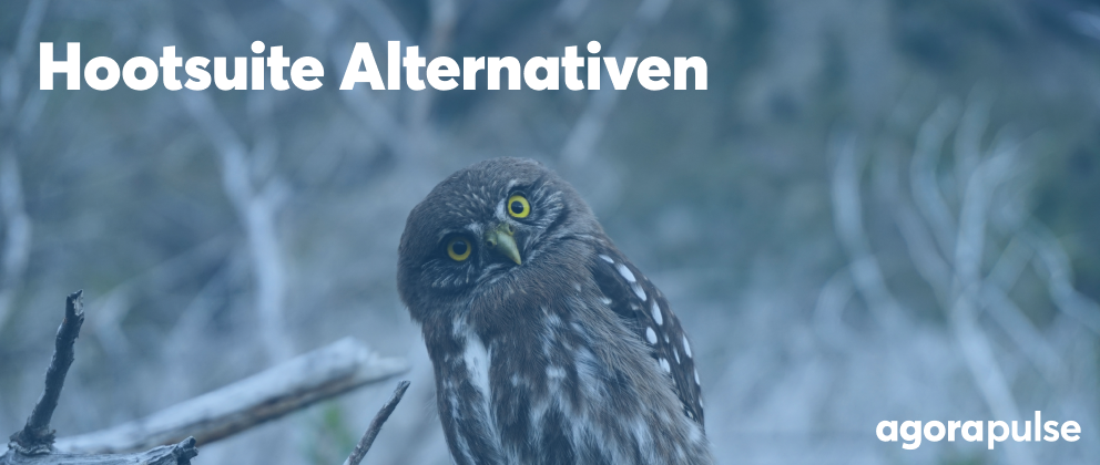Hootsuite Alternativen