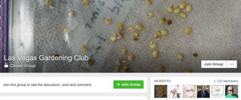 1.facebook-group-influencers