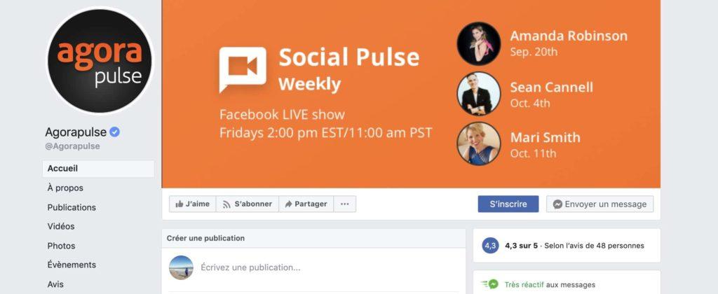 exemple page Facebook badge bleu