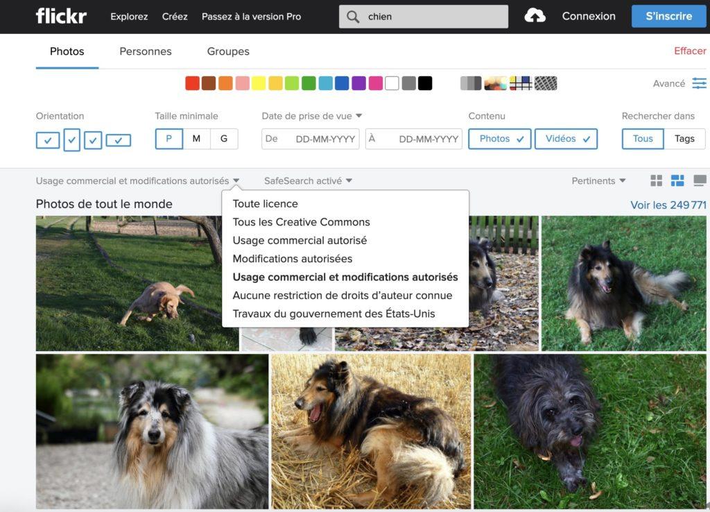 FlickrCommon : un site d'images libres de droits pour vos réseaux sociaux
