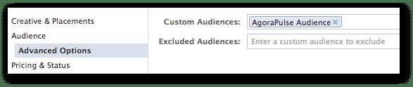 Enter Custom Audience