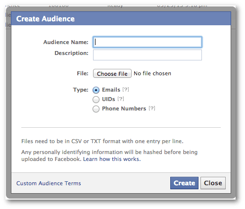 Name Custom Audience