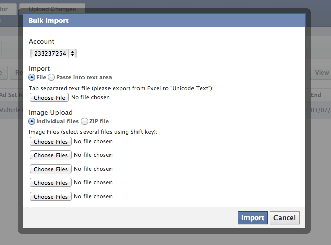 Facebook Power Editor Bulk Import