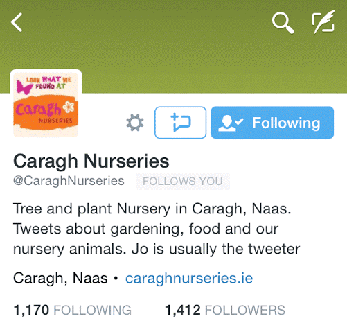 Caragh Nurseries - Not just about business.