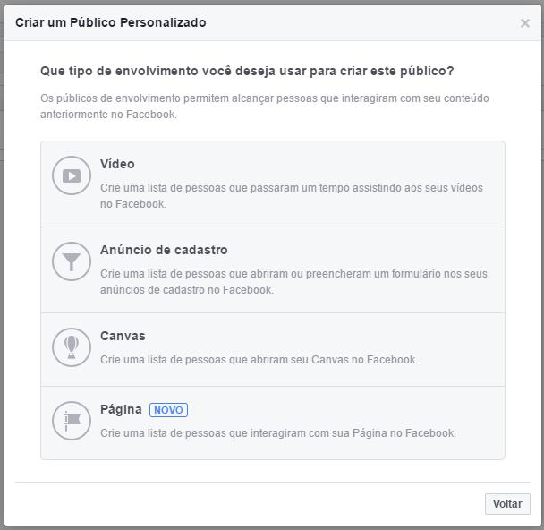 Crie um público personalizado com o engajamento de suas páginas do Facebook (3)