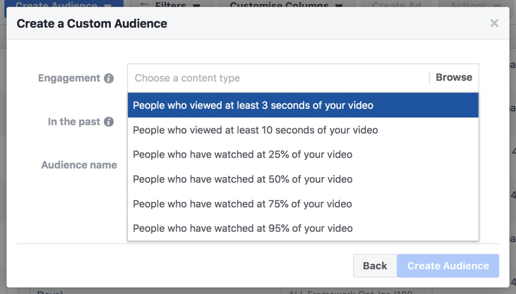 Video Custom Audience Eng Levels Advertising Campaigns